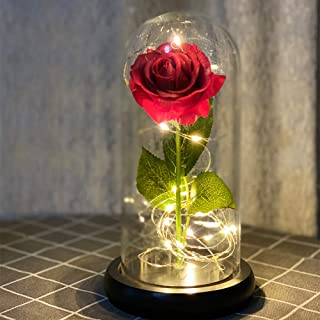 Beauty and The Beast Rose in Glass, Red Artificial Flower Rose Gift, Lasts Forever in A Glass Dome,Unique Gifts for Women,...