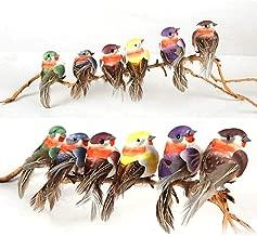 Best metal bird ornaments Reviews