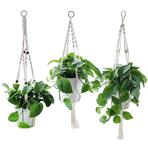 Trend Mark Cheap 4pcs Plant Hanger Garden Wall Hook Hanging Plant Hook Shelf Flowerpot Basket Lifting Ropes Garden For Hanging Plants Hooks & Rails