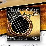 Jeu de cordes en nylon pour guitare classique Adagio Pro -Tension normale