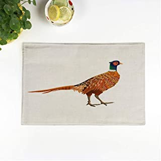 rouihot Set of 6 Placemats Green Cartoon Common Pheasant Side View Animal Beautiful Bird Non-Slip Doily Place Mat for Dining Kitchen Table