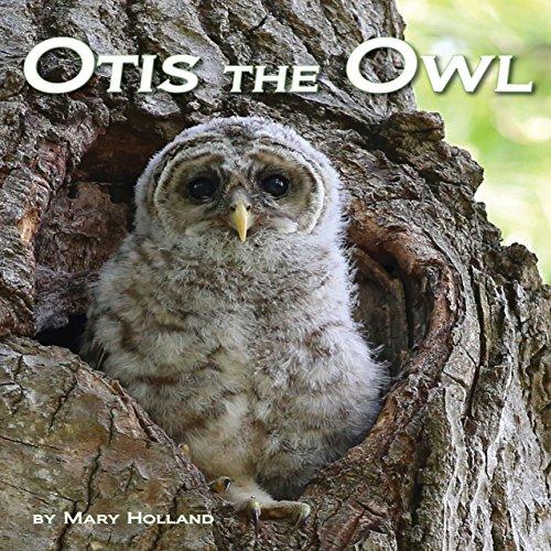 Otis the Owl copertina