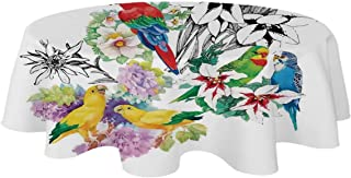 YOLIYANA Parrots Decor Modern Tablecloth,Parrots Observing The World on Top of A Floral Foliage Garden Jungle Tropic Weird Bird Print for Table,39