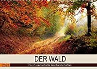 Der Wald. Durch zauberhafte Waldlandschaften (Wandkalender 2022 DIN A2 quer): Der Wald als duftender Erholungsraum. (Monatskalender, 14 Seiten )
