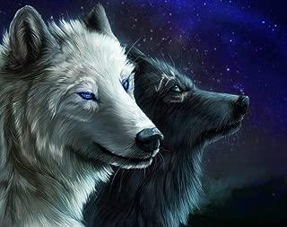 Wolf Reflection 5D Diamant Malerei Malen Nach Zahlen Kits Für Erwachsene