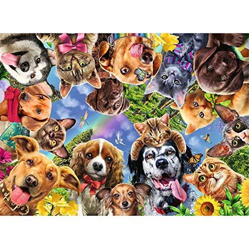 YINGXIN134 Rompecabezas para Adultos 4000 Piezas Varios Perros y Gatos Rompecabezas 4000 Piezas para Adultos Niños Juego de Rompecabezas Juguetes Regalo 141.5 × 87.5cm