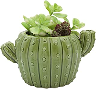 Best cactus shaped pot Reviews