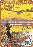 Hunnry Aviation Expo Lyon France Poster Metall