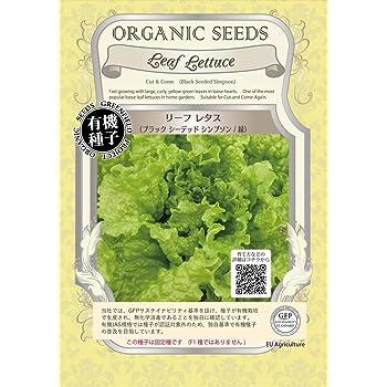 グリーンフィールド 野菜有機種子 リーフレタス <ブラックシーデッドシンプソン/緑> [小袋] A050