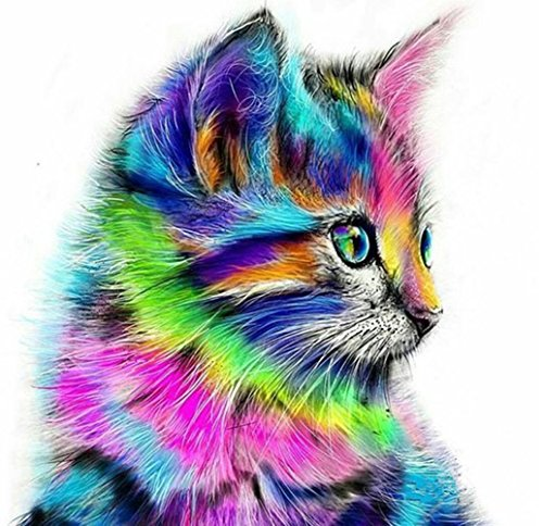 DIY 5D Diamond Painting Kit, Full Drill Colorful Cute Cat Embroidery Cross Stitch Arts Craft Canvas Living Room Wall Decor Bedroom 30x30cm