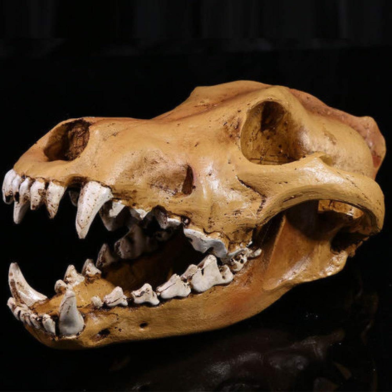 BUGLPH Medical Skull Home Art Decoration Resin Crafts 1 1 High Simulation Wolf Skull Model Resin Skull