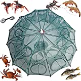 mlnyitus 2 pcs Foldable Fishing Bait Trap, 24 Holes Fish Trap for Outdoor eels Crab Lobster Minnows Shrimp catching Small Bait Fish net Crab Crawfish Automatic
