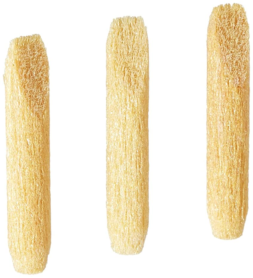 Testors 298837 Chisel Tip Replacement Nib for Paint Marker (3 /Pack), Beige
