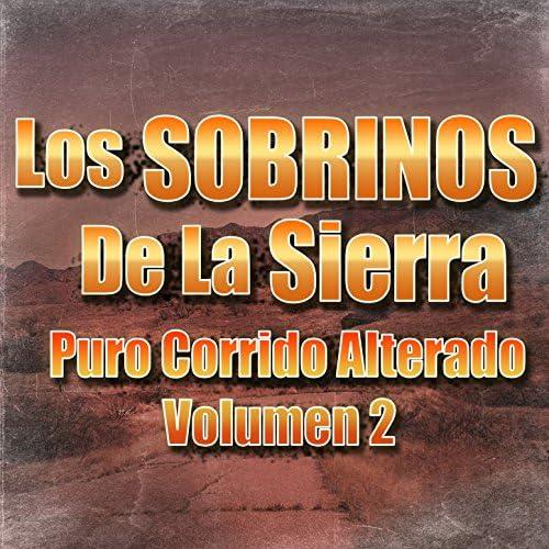 Los Sobrinos De La Sierra