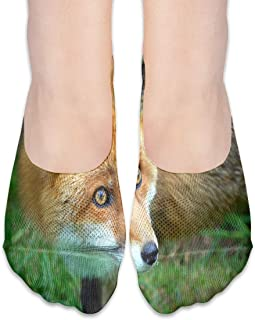 Calcetines Red Fox Trendy Womens Low Cut Sock Casual Calcetines invisibles para niña