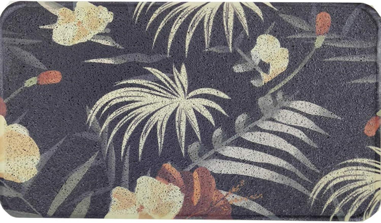 Entrance Rug,Front Entrance Door mat Indoor Outdoor mats Non Slip Backing Floor mat Easy Clean-Black 45x75cm(18x30inch)