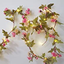 Hecaty 2 Strands Artificial Rose Garland Silk Flowers Hanging Rose Vine with Led String for Wedding Home Party Event Wreath Decor (Pink&Champagne)