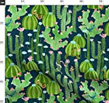 Kaktus, Wüste, Vögel, Schildkröten, Eidechsen,