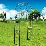 OUTO, arco stereoscopico in metallo da giardino, arbor pergolato con graziosa curva per piante rampicanti, rose, viti, giardino, cortile, cortile, matrimonio, nero