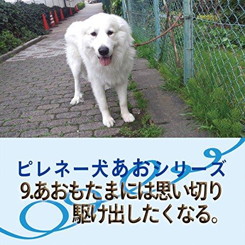 『ピレネー犬あおシリーズ 09.たまに思い切り駆け出したくなる。』のカバーアート