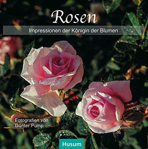 Rosen: Impressionen der Königin der Blumen