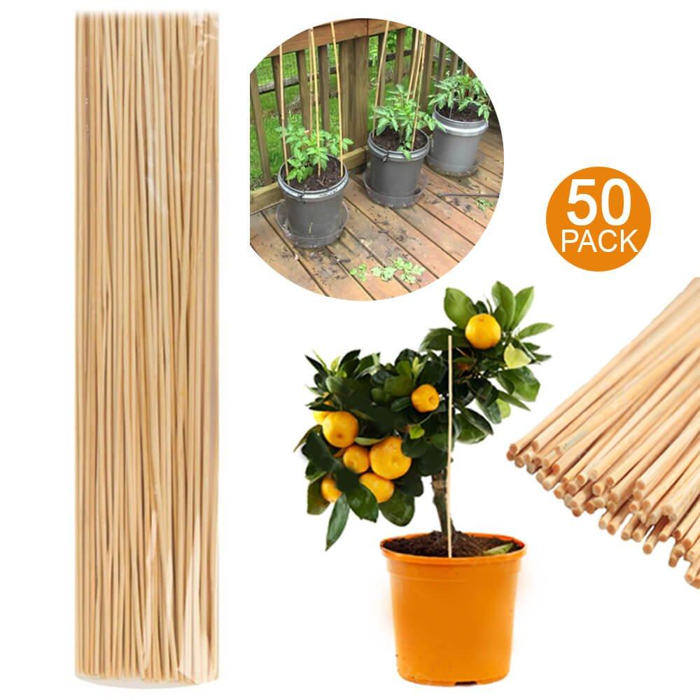50 de madera de bambú bastones de varillas 40 cm jardín plantas soporte para plantas flores Stick caña – planta apoyo Vara de bambú – jardín planta crecer de madera soporte: Amazon.es: Jardín