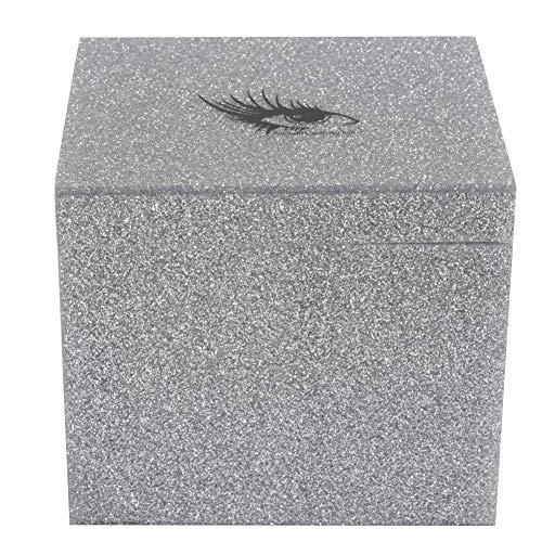Wimpern Zubehör, 10 Schichten Wimpernverlängerung Aufbewahrungsbox Falsche Wimpern Display Halter Fall Makeup Organizer(Silber)