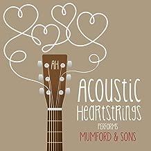 mumford and sons instrumental