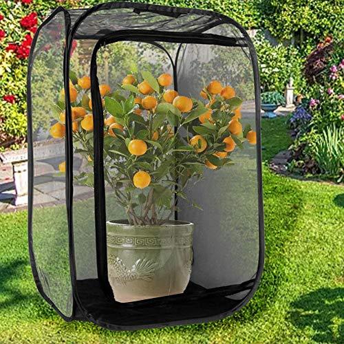 Chuanfeng Mini Insekten Und Schmetterling Netz Pop Up Klappbar Schmetterlinge Züchten Insekten Terrarium Marienkäfer Netzkäfig- 30x30 X 30 cm-schwarz