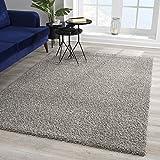 Impression Wohnzimmerteppich - Hochwertiger Öko-Tex zertifizierter Flächenteppich - Solid Color Teppich Hellgrau - Größe 80x150 - 5