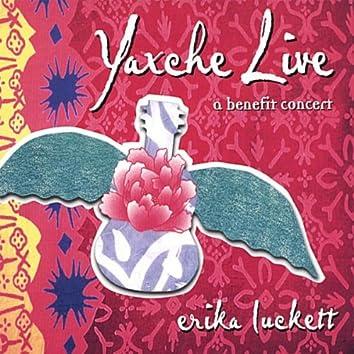 Yaxche Live