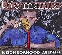 Neighborhood Wildlife