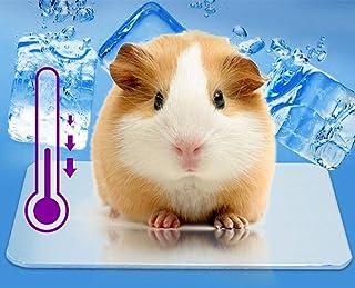ハムスター 涼感プレート ひんやりプレート アルミクールマット クールパッド 冷却マット 涼しい 夏用 ウサギ/モルモット/ハムスター用 qzsky 熱中症防止 暑さ対策 ケージアクセサリー 120*80mm