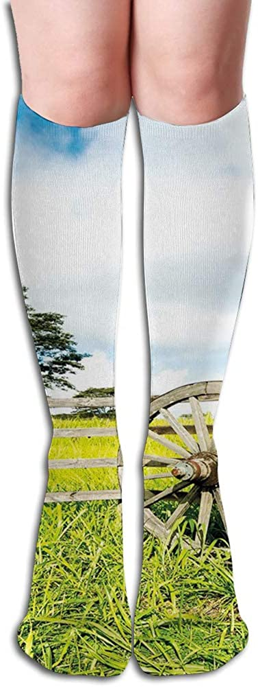 Men's and Women's Funny Casual Combed Cotton Socks,Fresh Green Meadow Ranching Fences Lush Growth Rural Landscape Trees