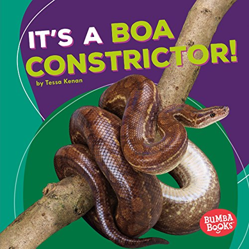 It's a Boa Constrictor! (Bumba Books: Rain Forest Animals)