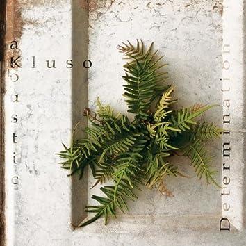 Determination / Kluso Akoustic