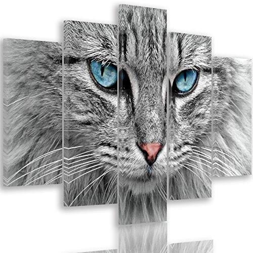 Feeby Frames Impression sur Toile Chat 5 pièces Art Gris 100x70 cm