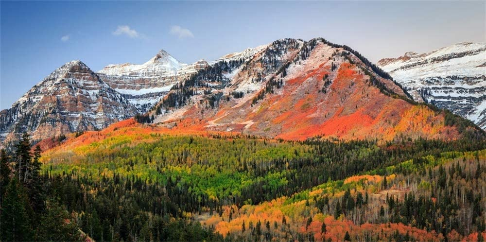 12x6ft Alps Autumn Chamonix Scenery Backdrop Red Coloring Alpine Valley Sunrise Snow Mountain Ridge Landscape Background for Photography Nature Scene Travel Photo Studio Props Vinyl