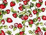 Erdbeere Stoff | 100% Baumwolle | Produkt Stoffbreite: 180