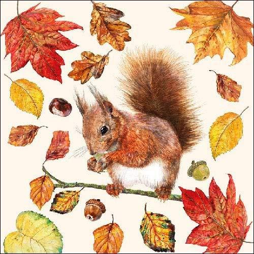 Lot de 20 serviettes en papier – 3 plis, 33 x 33 cm – manger écureuil