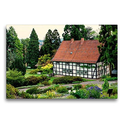 CALVENDO Toile sur châssis de qualité supérieure Motif jardin botanique dans le jardin de Bielefeld 75 cm x 50 cm