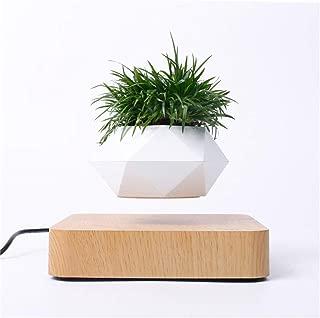 Best suspended pot plants Reviews