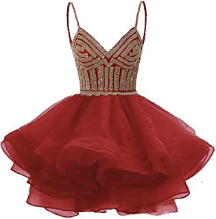 Best short poofy prom dresses under 100 Reviews