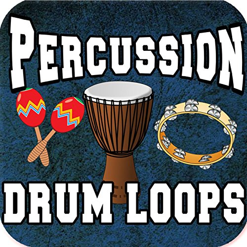 Shaker Long Percussion Loop 80bpm