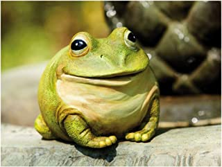 """Best Evergreen Garden Medium Portly Frog Painted Polystone Outdoor Statue and Key Holder - 6""""W x 5""""D x 6""""H Review"""