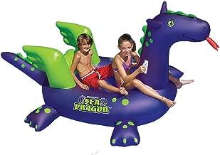 Best giant sea dragon Reviews