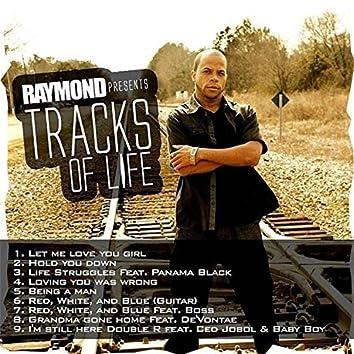 Raymond Presents Tracks of Life