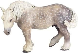 Best percheron horse price Reviews