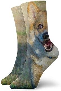 tyui7, Corgi Dog Running On Field Calcetines de compresión antideslizantes Cosy Athletic 30cm Crew Calcetines para hombres, mujeres, niños