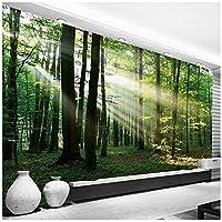Wkxzz 壁の背景装飾画 カスタム写真壁紙森日光日光壁画寝室リビングルームソファテレビ背景壁画-250X175Cm